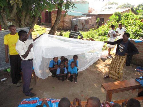 mosquito net training at school