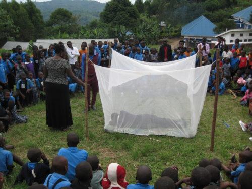 mosquito net training