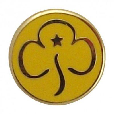 brownie badge
